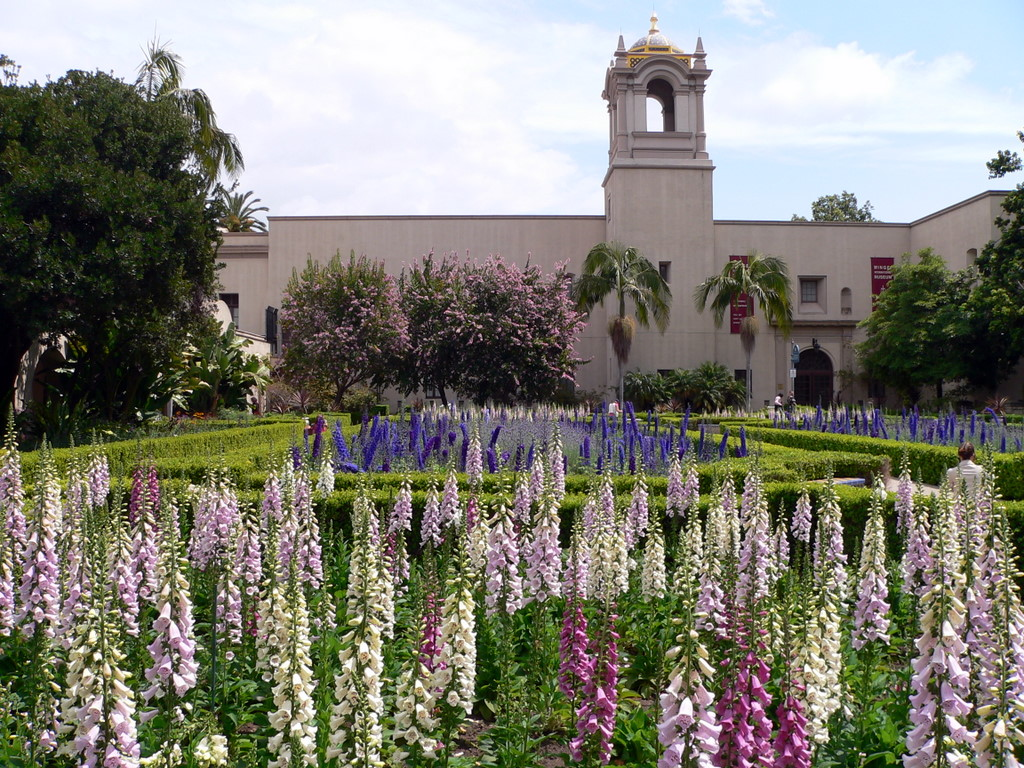 the attractions of balboa park in san diego Balboa park is very much a part of san diego's culture, but many of the museums and activities in the park have a fee that doesn't mean you should skip the park, though.