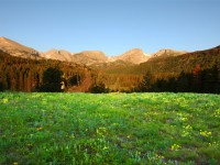 Vistor's Guide to Rocky Mountain National Park